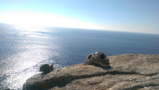 Shoes abandoned at Finisterra